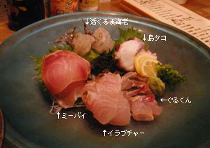 Yoshizaki1